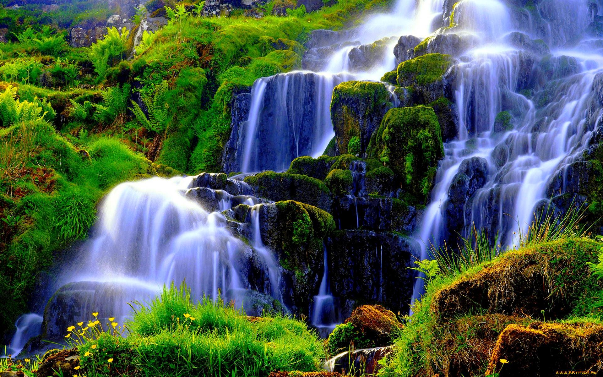 любого фон для рабочего стола водопады живые принцип, которым руководствуется